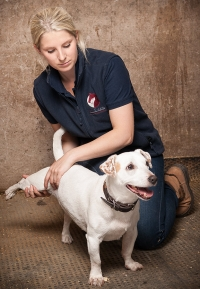 Corporate Portrait of Animal Physiotherapist with Dog