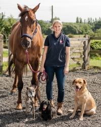 Corporate Portrait of Animal Physiotherapist with Horse and Dogs